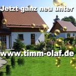 logo_timmolaf_001